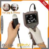Farmscan M30 Modus-Tier-Schwangerschaft-Prüfungs-Ultraschall des niedrigen Preis-Handb