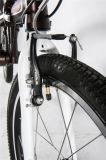 منافس من الوزن الخفيف متأمّلة مصغّرة يطوي درّاجة/عاليا فعّالة يطوي درّاجة