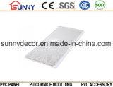 Comitato di parete laminato plastica del PVC del rivestimento del soffitto del PVC del comitato di parete