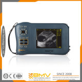 Farmscan M50 Grand Grossesse Animaux médical Scanner Diagnostic Ultrasound avec le bon prix