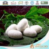 Copo de seda com 100% de seda natural cheio de verão