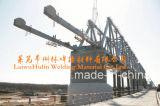 中国の高品質Agglomeraredは溶接用フラックスSj101/301/501を見た