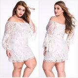 Custom New Designs Lace Fringe Trompette à la mode à manches longues XL Taille Fat Women Dress