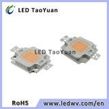 O diodo emissor de luz cresce a microplaqueta clara 380-840nm cresce a lâmpada 10W