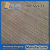 Usage industriel de four à recuire de bande de conveyeur de température élevée de courroie en verre de four