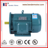 Motor eléctrico del alto funcionamiento general para la empaquetadora