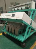 Arroz/compaginador del color del grano/de la correa exportado al fabricante de China de más de 40 países