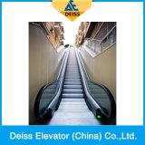 Escada rolante pública interna do passageiro automático paralelo do fornecedor superior de China