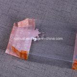 Rectángulo de empaquetado del pequeño del plegamiento del claro del PVC regalo plástico transparente de encargo del animal doméstico