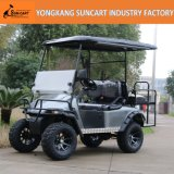 2+2 Sitzgolf-Auto-Export zum nordamerikanischen, kundenspezifischen Golf-Auto mit angestrichenen Rädern
