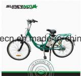 Повелительница E-Bike зеленой силы