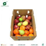 과일 물결 모양 판지 상자 (FP5072)