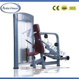 熱い販売の適性装置の三頭筋の出版物の体操機械
