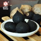 Alho quente chinês 1000g do preto do peso da venda