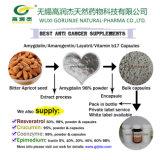 Anti Cancro extrato de sementes de alperce Amygdalin Natural cápsulas
