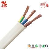 PVC Insulated et Sheathed 300/500V de câble d'alimentation de Core Flat de la qualité 2 Cores/3