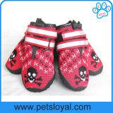 El perro respirable calza cargadores del programa inicial del animal doméstico del protector de la pata de la suavidad que hacen punto