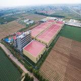 Vorfabriziertes große Überspannungs-Stahlkonstruktion-Lager