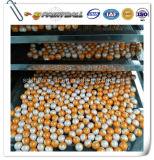 In het groot Beste Kwaliteit 0.68 Paintballs