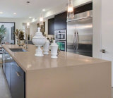 Partie supérieure du comptoir artificielle de pierre de quartz pour la cuisine