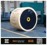 Nastro trasportatore di nylon della tela di canapa Nn100