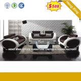 現代居間の家具のホテルのレセプションの革オフィスのソファー(HX-SN045)