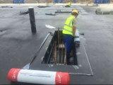 Selbstklebendes Bitumen-wasserdichte Membrane/Selbst--Befolgte geglaubte/Asphalt das Bitumen-wasserdichte Dach Roof Filz
