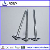 Q195 o Q235 Iron Nails