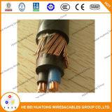 ASTM 표준 동심 케이블 2*10AWG+10AWG 2*8AWG+1*8AWG 600V 종업원 출입구 케이블