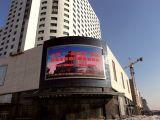 Elektronische Panel LED-Bildschirmanzeige mit neuester Qualität des Preis-P10