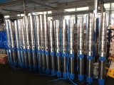 6sp20深い井戸の国内使用のための浸水許容の水ポンプ