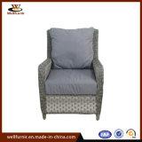 Высокое качество плетеной разговорным диван, садовая мебель (WF053284)