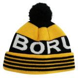 Chapéu feito malha do inverno do chapéu na cor agradável NTD1635