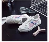 도매 스포츠 단화, 여자 하이 힐 스포츠 단화, Air Sport Shoes 숙녀