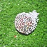 متعدّد لون عنب كبس كرة كبس يرتّب كرة كلّ [50مّ] [65مّ] [80مّ]