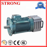 Aufbau-Bremsen-Motor für den Hebevorrichtung-Kran, der Drei-Motormechanismus hochzieht