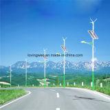 Fabricación del alumbrado público del viento solar LED de Jiangsu con alta calidad