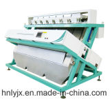 Сортировщица цвета риса, машина цвета сортируя в стане риса