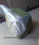 Горячая продажа блеск кожи ядер семян тыквы с Guanghua Шаньдун