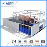 Chinesisches Hersteller-Schwein-werfender Rahmen für Verkauf