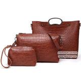 Sacchetto di mano stabilito del grano del coccodrillo dei 2017 del nuovo sacchetto di disegno della signora Shoulder Handbag Woman sacchetti di acquisto dal fornitore Sy8647 della Cina