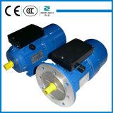 YL de inductie elektromotor van de reeks enige fase met beginnende condensator lopende condensator