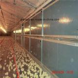 Автоматизированный птицы сельскохозяйственное оборудование для производства бройлерных