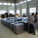 Llevar la placa de ánodo de níquel/Electrorefining Electrowinning/electrólisis