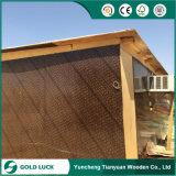 Película de núcleo de madeira Wear-Resistant enfrentou o contraplacado para construção