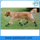 O cão de animal de estimação elevado morno da venda quente do fabricante calç a fonte do animal de estimação