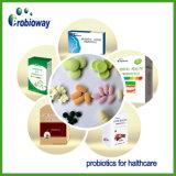 Nutrizione acidofila di dieta della capsula dell'alimento salutare della polvere di Probiotics del lattobacillo