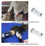 Numérisation sans fil à ultrasons à usage vétérinaire pour les porcins, ovins, les chiens, chats, vétérinaire échographe, vétérinaire Téléphone cellulaire, comprimé à ultrasons à usage vétérinaire