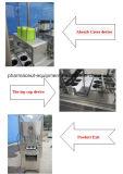Helado de alta velocidad de llenado de leche de máquina de embalaje sellado con impresora de código