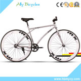 Vélo/arc-en-ciel bicyclette fixe de la montagne Bike/60cutter route Bike/26 ""
